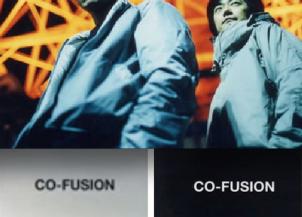 CO-FUSION11